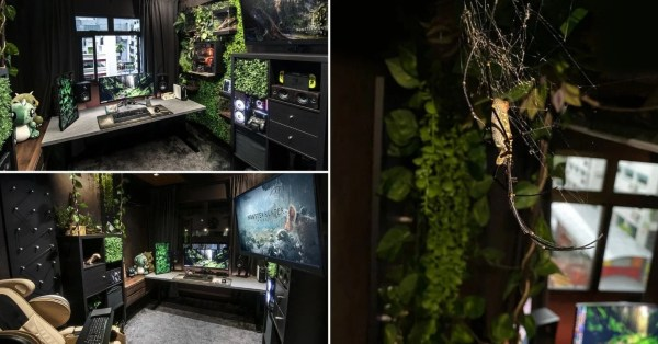 Man Transforms HDB Room Into A Botanical Gaming Haven, Pet Spiders Wander Freely Inside