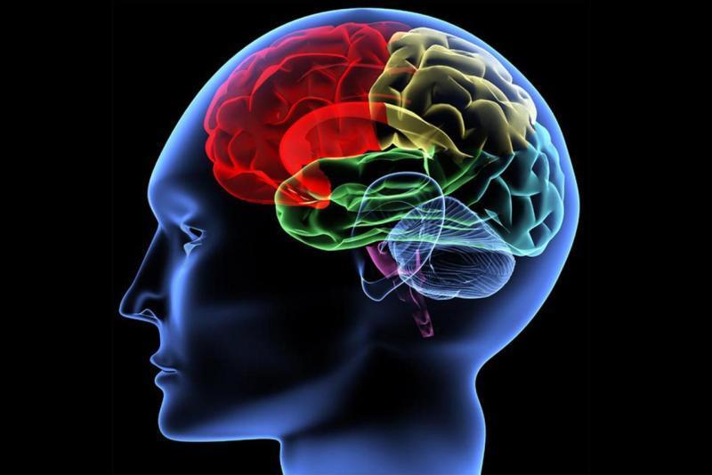 أفضل 2 فيتامينات لزيادة التركيز والذاكرة/متألقة