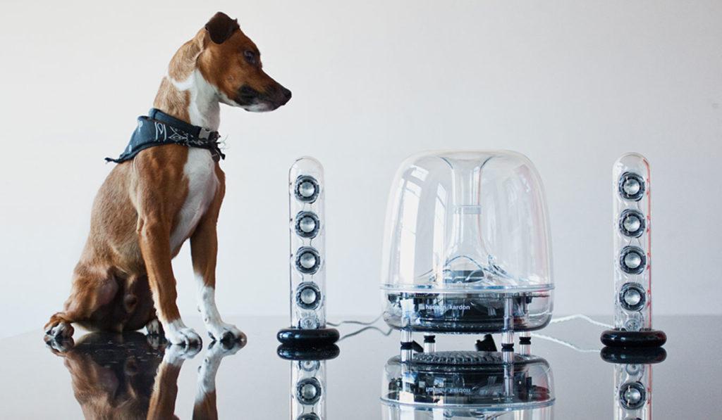 Harman Kardon SoundSticks Wireless 2.1 Desktop Speaker System   The Best Desktop Speakers
