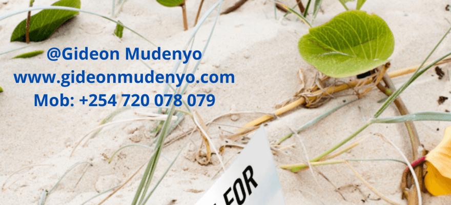 6Gideon Mudenyo – Media Kit