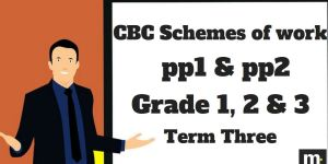Hygiene and Nutrition Grade 3 CBC schemes of work 2018, Term three, free pdf download