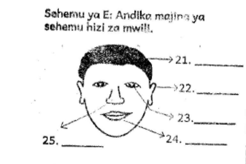 Grade 2 Mathematics Exam Past Papers (End of Term 1, 2018
