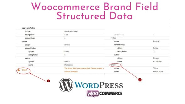 Wocommerce Brand Field Structured Data for recommended field (Plugin)