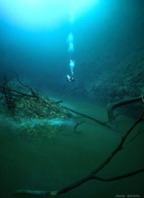 Gambar Dalam Laut : gambar, dalam, SUNGAI, DALAM, Mutiaraislam, Online