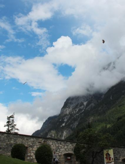 Erlebnisburg Hohenwerfen: Da oben, siehst du die zwei?