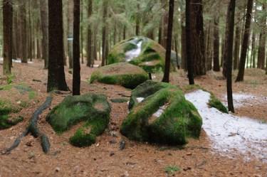 Waldviertel mit Kind: Platz des Skorpions: Opferstein bzw. Gebährstein