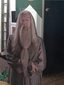 Dumbledore am Spiegel