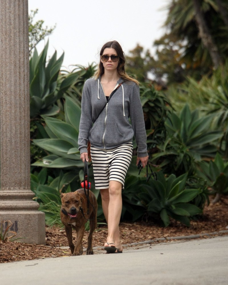 Jessica Biel walks her dog (5/6)