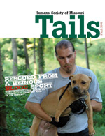Dharma (formerly Tallulah) graces the cover of HSMO's Fall issue of Tails Magazine.