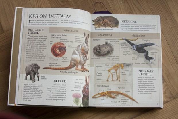 laste loomaentsüklopeedia 073_v