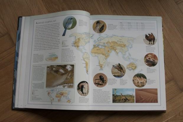 loomade atlas 080_v