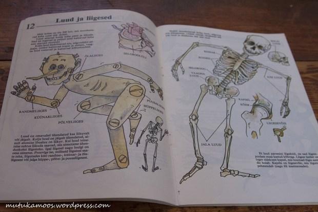 raamat inimese kehast 4