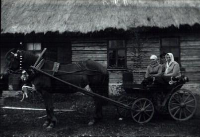 Foto. Karl Täht