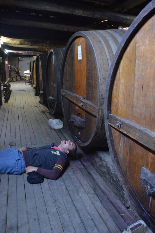 Viinitilalla Grampiansilla