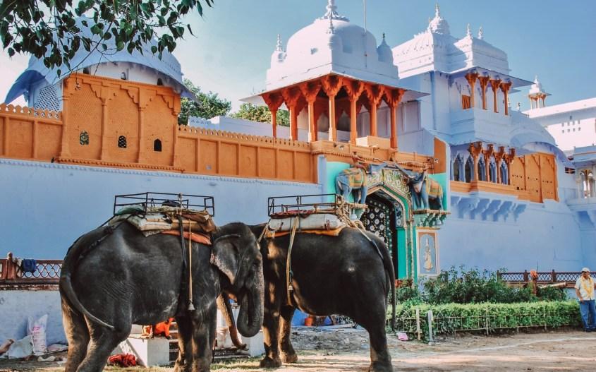 Kota, Intia
