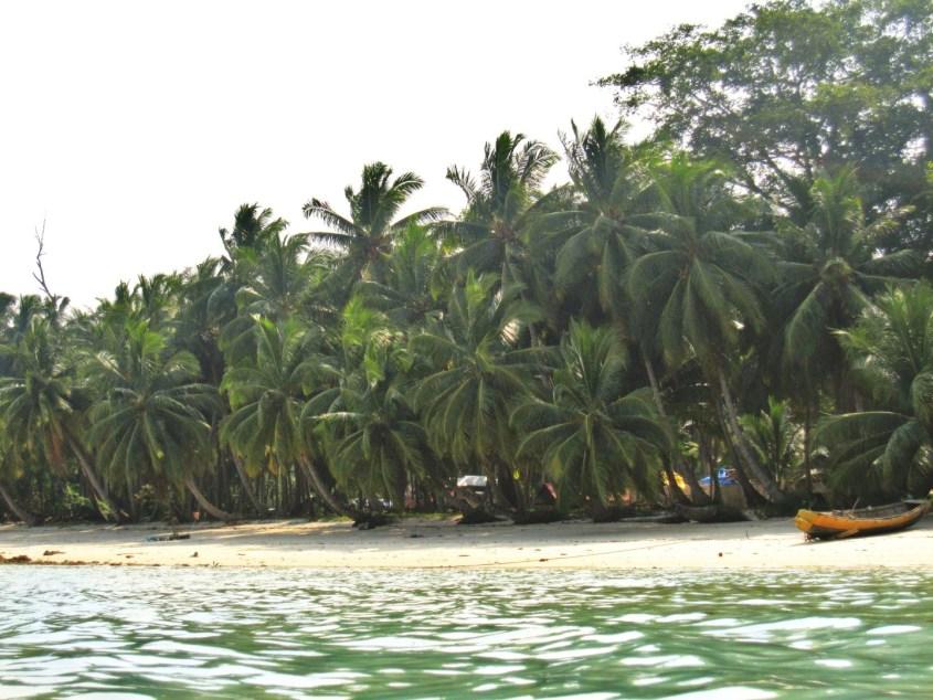 Andamaanit | Havelock Island