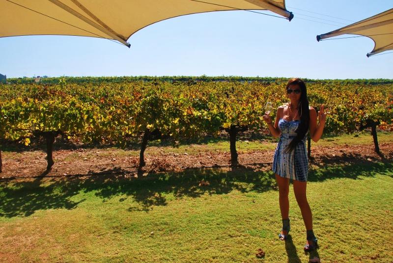 swan valleyn viinitiloilla