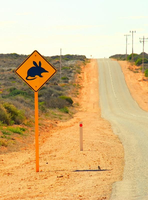 road trip länsi-australiassa