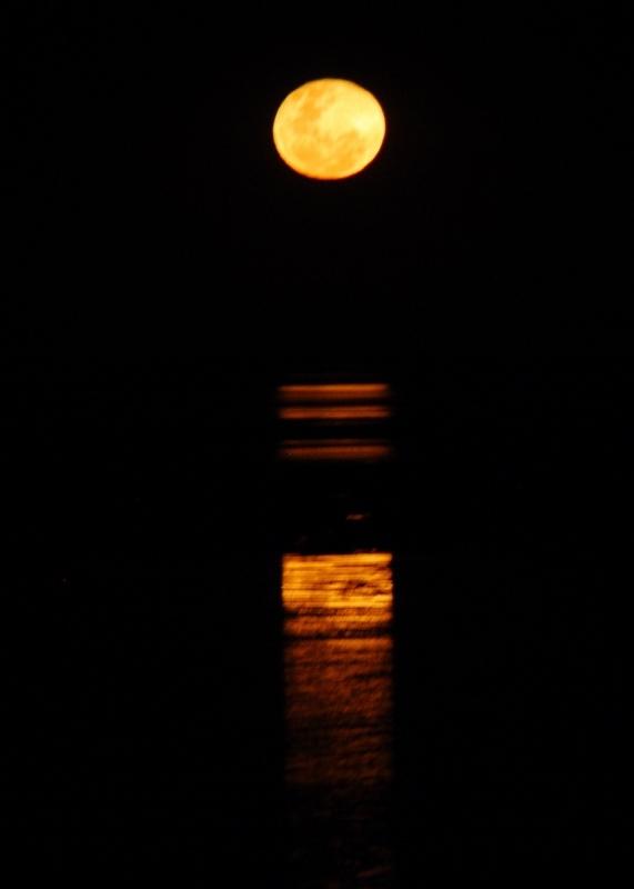 Stairway to the moon, Broome
