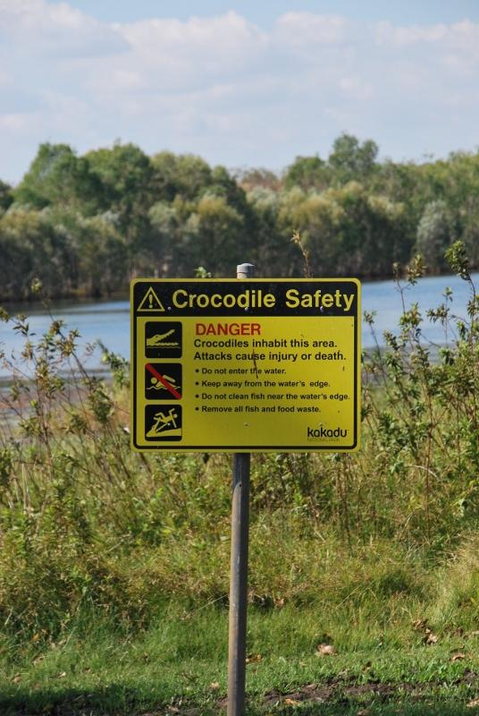 Australian krokotiilit