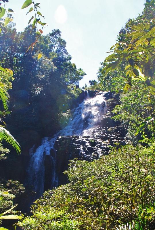 Queenslandin vesiputouksia