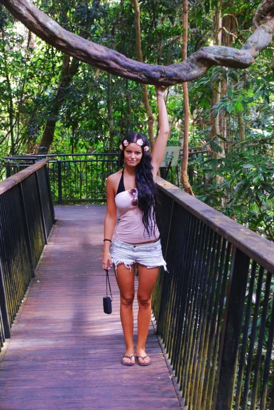 Cairnsin sademetsää