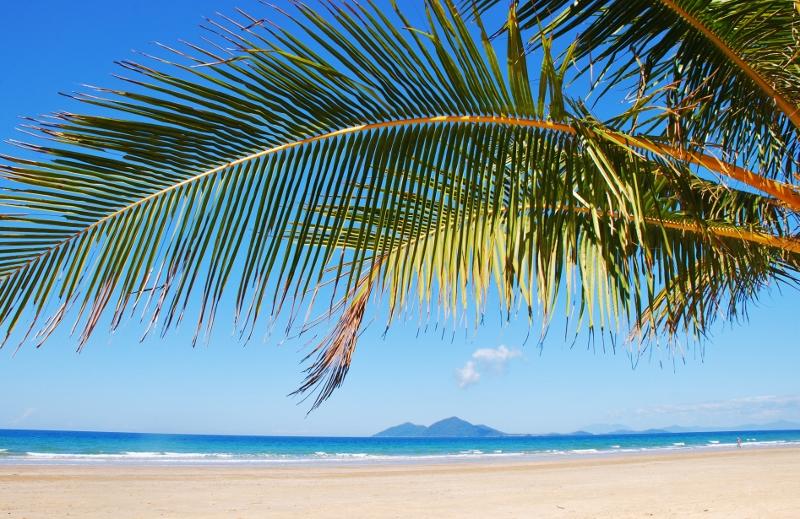 Mission Beachin palmuranta