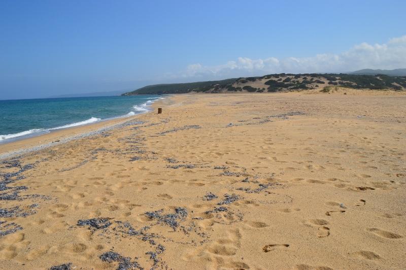 Costa Verden rantaa, Sardinia