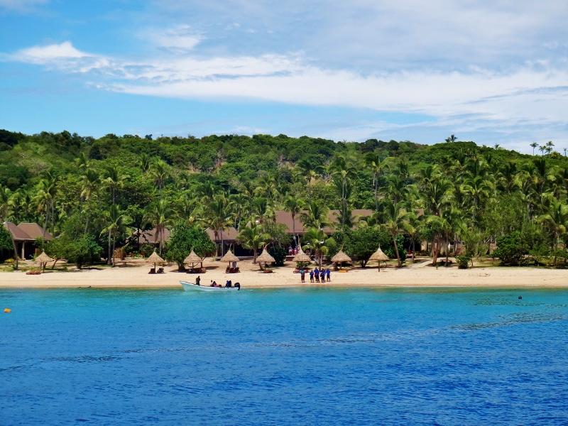 Paradise Coven palmuranta, Fidzi
