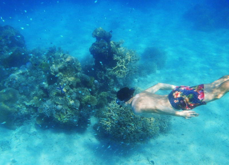 Snorklailua Fidzillä