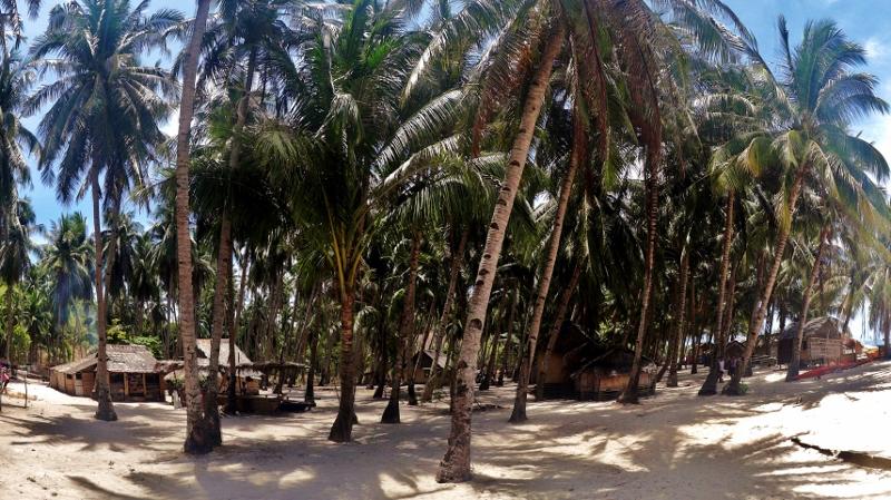 Palmusaari Filippiineillä