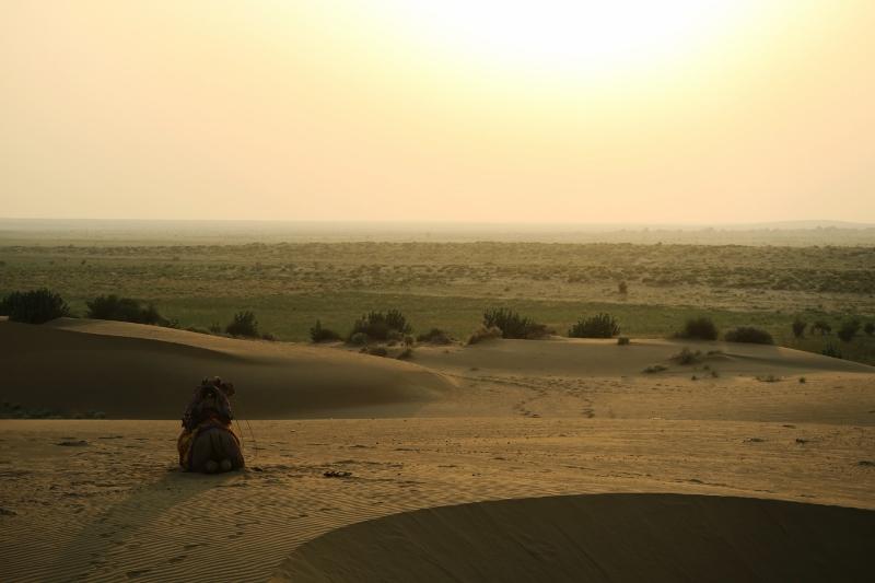 jaisalmer aavikkoretki