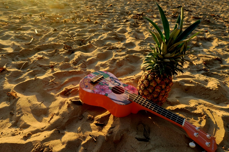 Ukulele ja ananas