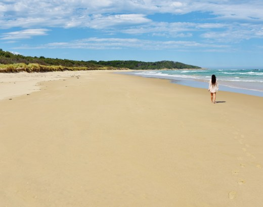 Croajingolong, Australian autiolla rannalla