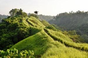 Bali vinkit