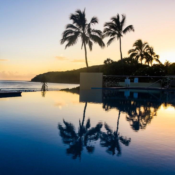 Noosa kokemuksia | Palmujen siluetit heijastuvat uima-altaaseen.