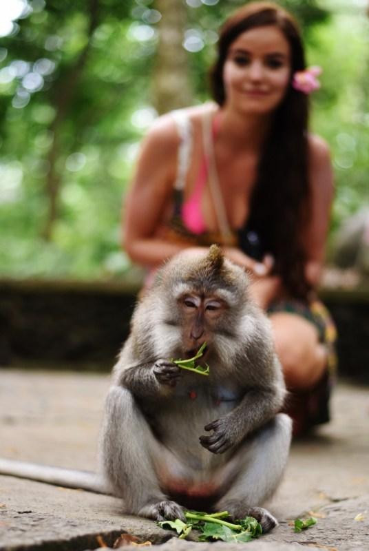 Ubudin apinametsa