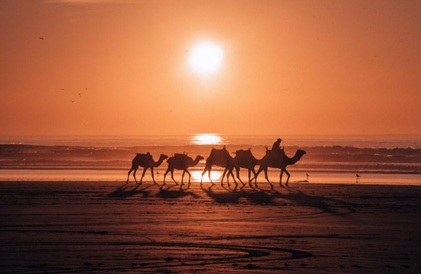 Essaouira on Marokon helmi Atlannin rannalla
