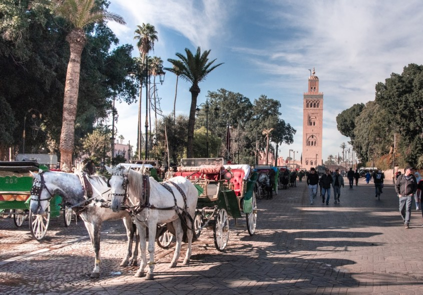 mitä tehdä marrakeshissa