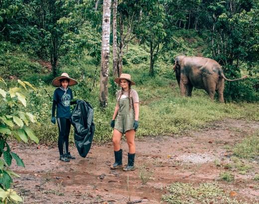 Vapaaehtoistyö Thaimaassa | Ekomatkaajat