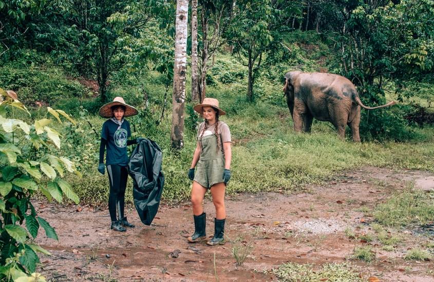 Vapaaehtoistyö elefanttien parissa Thaimaassa