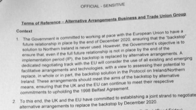 Government faces no-deal backlash from its business experts 1
