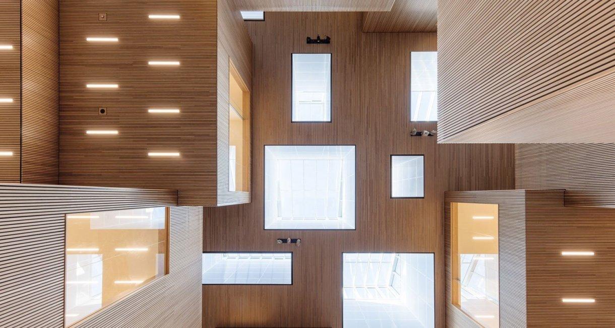 Life-Science-Bioengineering-oak-wood-building-celling