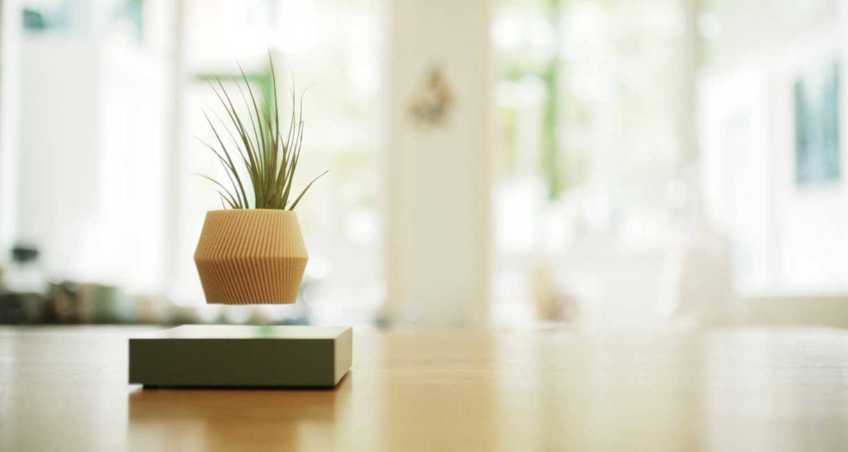 hoverbox-wood-pot-plant-display