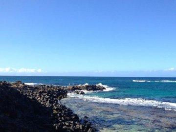 Maui Wind And Sea Shore