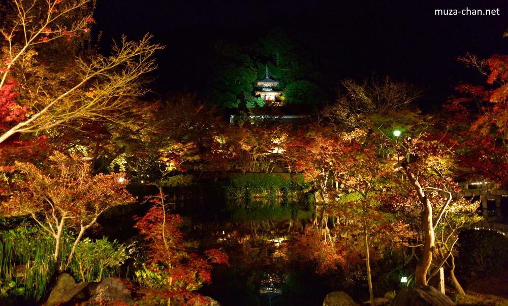 Leaves Wallpaper Fall Simply Beautiful Japanese Scenes Kyoto Eikando Autumn