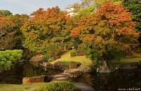 Japanese gardens, Stepping stone bridge