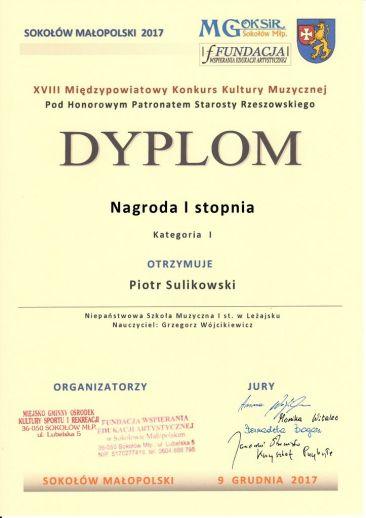 1Sulikowski-page0001
