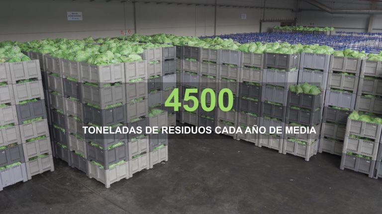 SIGRE-Planta-de-reciclado-Insitucional-mvb-producciones-Tudela-Duero-(6)