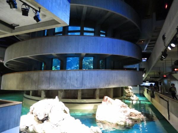 England Aquarium Mv Dirona